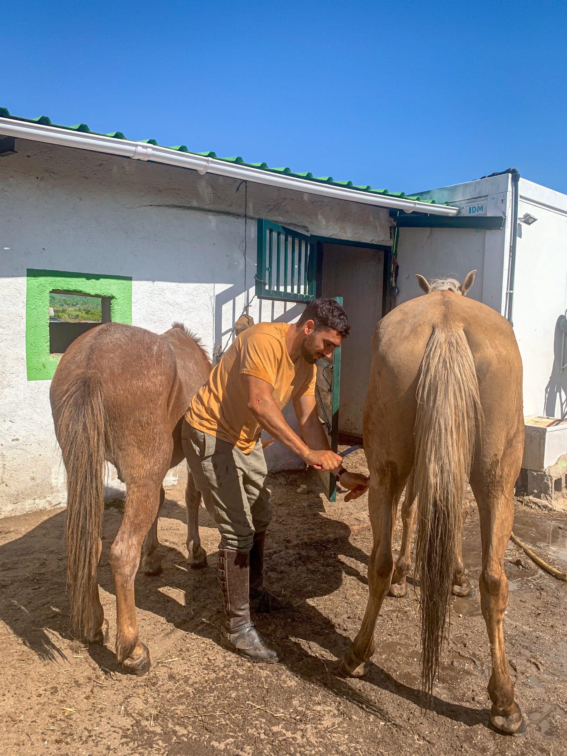 montar a caballo en Lanzahíta: turismo responsable